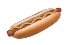 hotdog Obrazy Stock