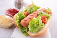 Hotdog Obraz Royalty Free