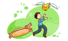 Hotdog chase a man and butter fly  Royalty Free Stock Image
