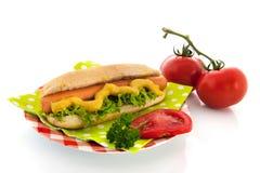Hotdog com rolo de pão Fotografia de Stock Royalty Free