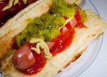 Hotdog do verão Imagem de Stock