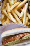 Hotdog and Fries Stock Images