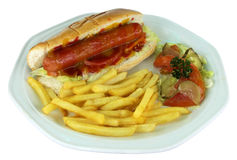 Hotdog and Fries on Plate Royalty Free Stock Image