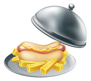 Hotdog and Fries on Platter Royalty Free Stock Images