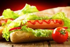 Hotdog grelhado com mostarda e ketchup Fotografia de Stock Royalty Free