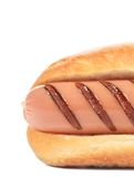 Hotdog with grilled sausage roll. Stock Photography