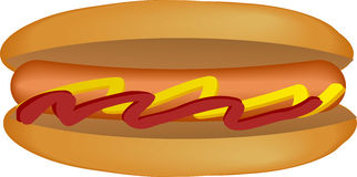 Hotdog illustration Royalty Free Stock Photography