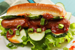 Hotdog with ketchup and cucumbers closeup Royalty Free Stock Photos