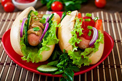 Hotdog with ketchup, mustard, lettuce and vegetables Stock Image
