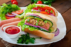 Hotdog with ketchup, mustard, lettuce and vegetables Stock Images