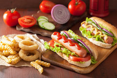 Hotdog with ketchup mustard vegetables and french fries Stock Image