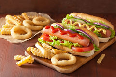 Hotdog with ketchup mustard vegetables and french fries Royalty Free Stock Images