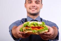 Hotdog med korven och den nya tomaten Gatamat Royaltyfria Bilder