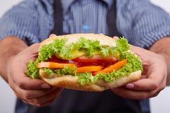 Hotdog med korven och den nya tomaten Gatamat Arkivbild
