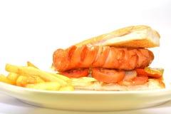 Hotdog met frieten Royalty-vrije Stock Fotografie