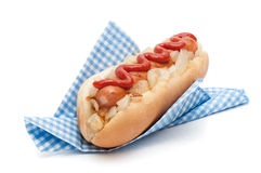 Hotdog In Napkin. Hot dog roll with fried onions and tomato sauce in napkin on a white background Royalty Free Stock Photos