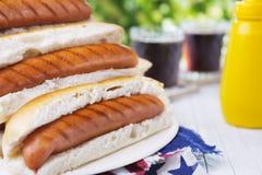 Hotdog op een openluchtlijst in helder licht stock afbeeldingen