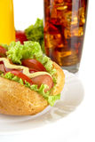 Hotdog on plate with french fries with cola Royalty Free Stock Photos