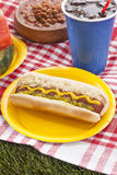 Hotdog sandwich in picnic Stock Image