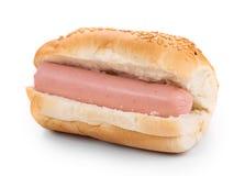 Hotdog with sausage roll. Stock Photography