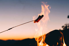 Hotdog in Stick Cook in Fire Stock Image