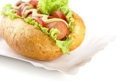 Hotdog on the tray on white background Stock Images