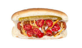 Hotdog with the works Stock Photo