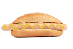 Hotdoge oder Wiener Würstchen mit Senf Lizenzfreies Stockfoto