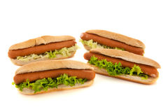 Hotdogs with bread rolls Royalty Free Stock Images