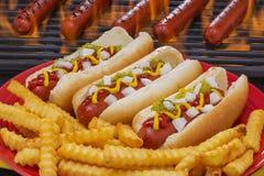Hotdogs in Broodjes en bij de Barbecuegrill die worden geroosterd Royalty-vrije Stock Foto