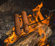 Hotdogs Cooking Over Campfire Stock Photo
