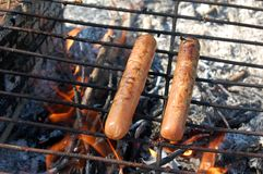 Hotdogs die over Kampvuur worden gekookt royalty-vrije stock foto