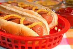 Hotdogs mit Würzen Stockbild