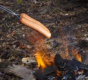 Hotdogs over een kampvuur Royalty-vrije Stock Afbeeldingen