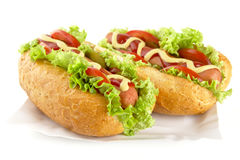 Hotdogs on the tray on white background Royalty Free Stock Photography