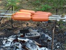 Hotdogs of worstjes over het kampvuur stock fotografie