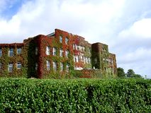 Hotel. Building covered in foliage Royalty Free Stock Images