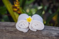 Hotel amenities kit spa, soap, shampoo, towels. Hotel amenities kit spa, soap, shampoo and towels royalty free stock images