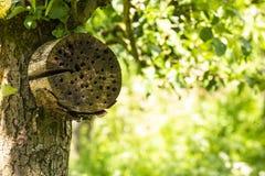 Hotel artificial del insecto en un bosque verde fotografía de archivo libre de regalías