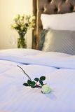 Hotel bed. Modern furnished hotel bed with flower in the foreground Stock Image
