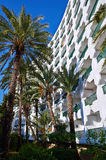 Hotel building and palm trees. Scenic view of hotel building with palm trees in foreground Stock Images