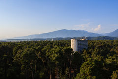 Hotel buildings surrounded with pine trees nearby caucasus mountains Royalty Free Stock Images