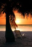Hotel chair. Palm tree on the beach of Honduras hotel, sunset time, some skyfire filter use and nd too stock photo