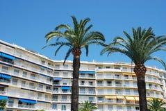 Hotel con i palmtrees Fotografie Stock Libere da Diritti