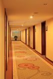 Hotel corridor. Closeup of hotel corridor with carpet on the floor Royalty Free Stock Photography