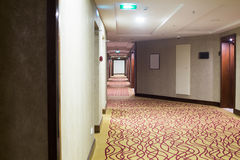 Hotel corridor with carpet Royalty Free Stock Photography