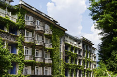 Hotel covered with vegetation Royalty Free Stock Photos