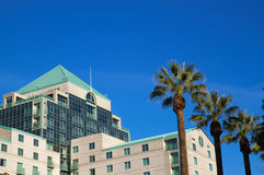 Hotel de California con las palmeras Fotografía de archivo