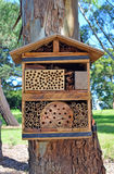 Hotel de la abeja para las abejas nativas solitarias Fotos de archivo libres de regalías