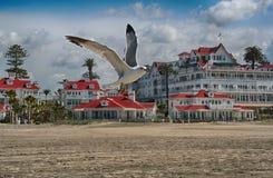 Hotel Del Coronado image stock
